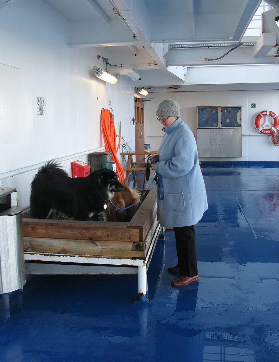 Hundeklo auf dem Schiff