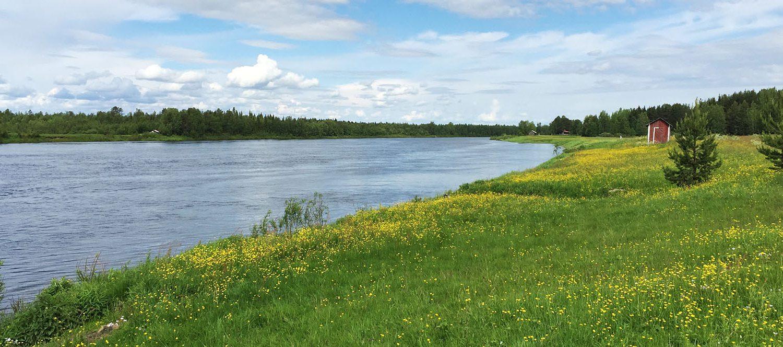 Sommer in Finnland