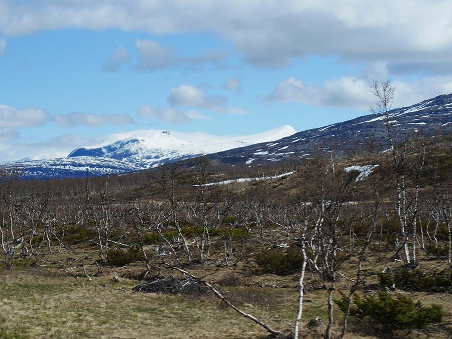Berge Nordnorwegen