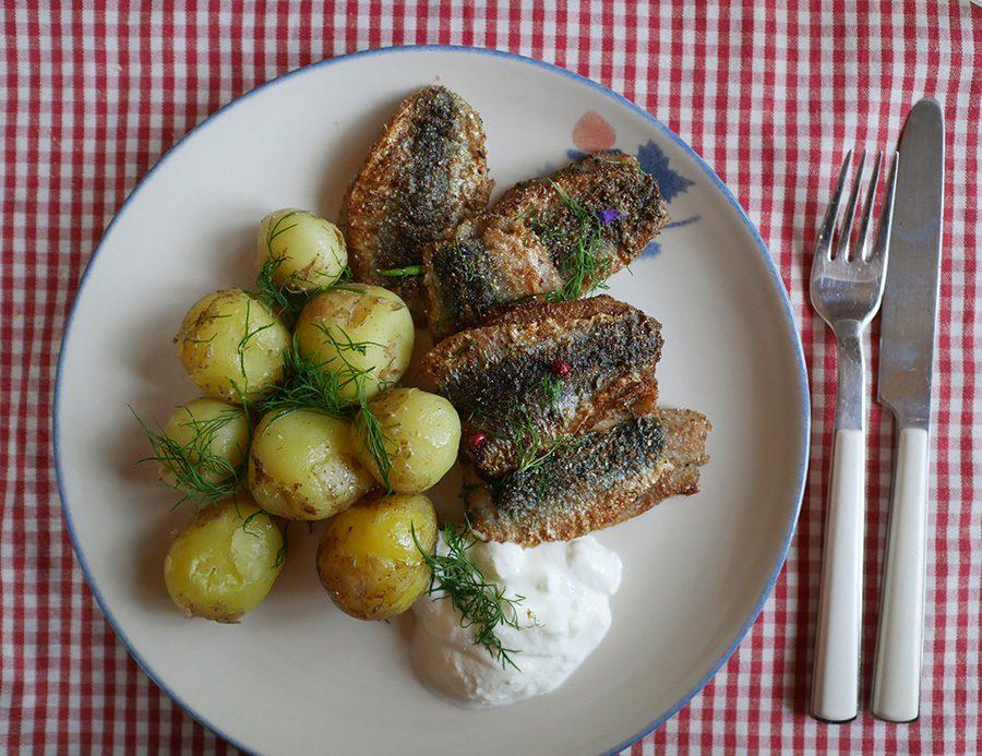 gebratene Fischfilets mit Kartoffeln