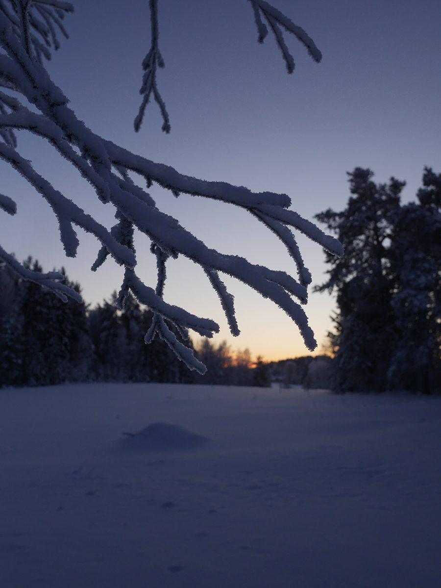 Wintertlandschaft