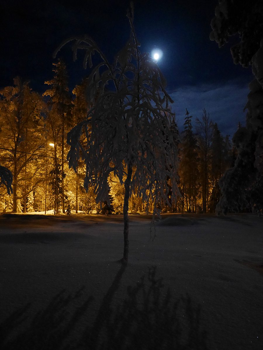Mond Winter