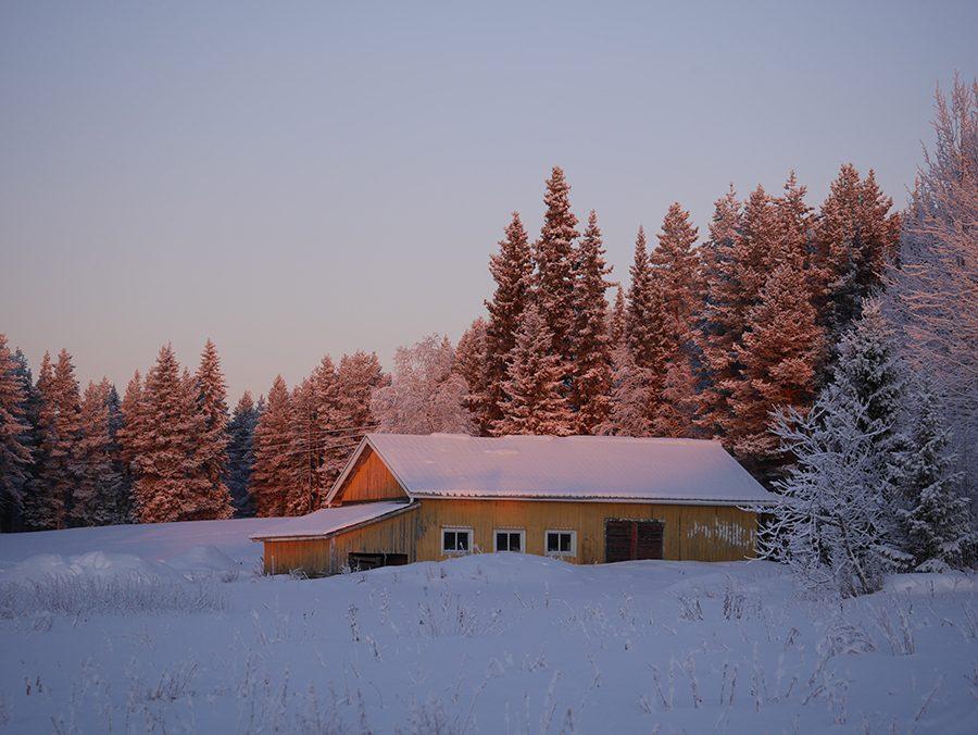 Winter Sonnenlicht