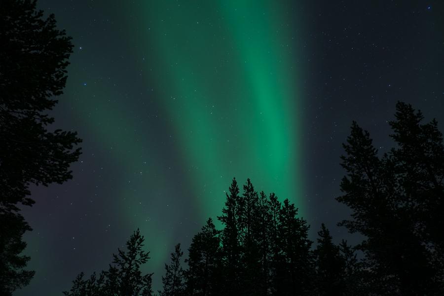 Nordlicht Polarlicht